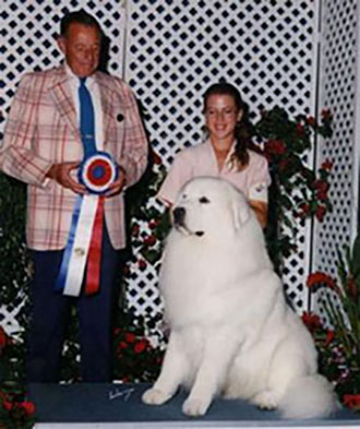 Great Pyrenees DD Best in Show